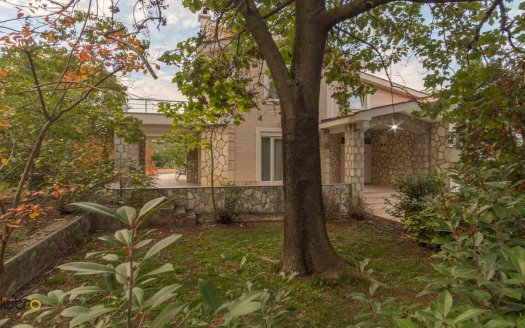 podgorica house with garden rent